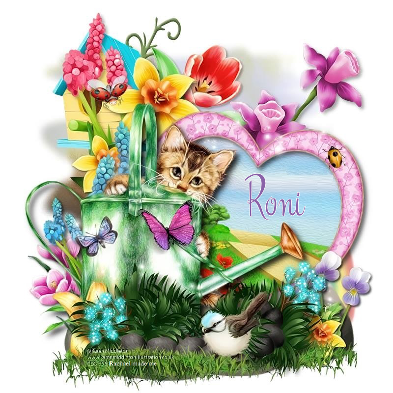 CLOSED UNTIL RONI COMES BACK---RONI'S FAIRY BOX - Page 11 6368676945325683598237964